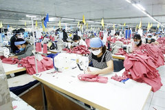 Vietnam needs to develop raw materials production to take advantage of EVFTA