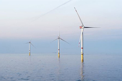 Vietnam has great potential for wind power