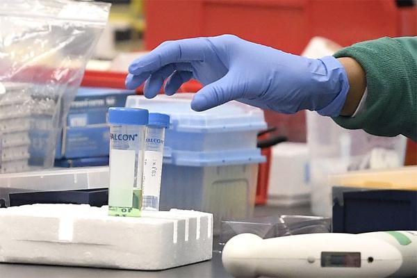 Đột biến mới khiến virus nCoV trở nên lây lan nhanh
