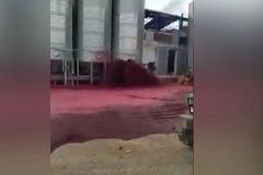 Sự cố khiến hơn 50.000 lít rượu vang chảy tràn mặt đất