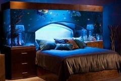 Tuyển tập những phòng ngủ độc đáo không tưởng trên thế giới, trong đó choáng nhất là ý tưởng bể bơi trong phòng ngủ