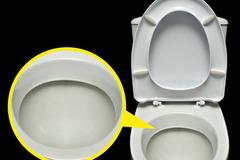 Tại sao nhà vệ sinh luôn có màu trắng?