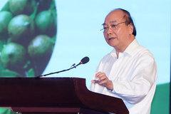 Thủ tướng: Cần 10 hay 20 năm để mắc ca Việt Nam đứng đầu thế giới
