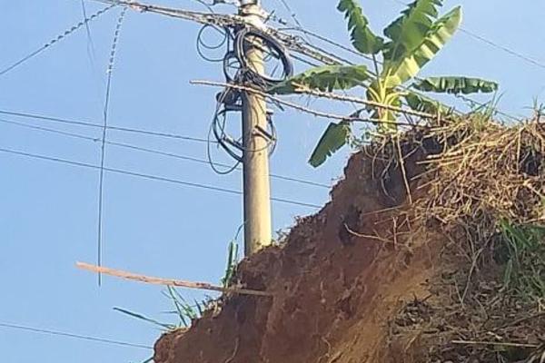 An toàn hành lang lưới điện: PC Bắc Kạn cần sự hỗ trợ cuối cùng của chính phủ