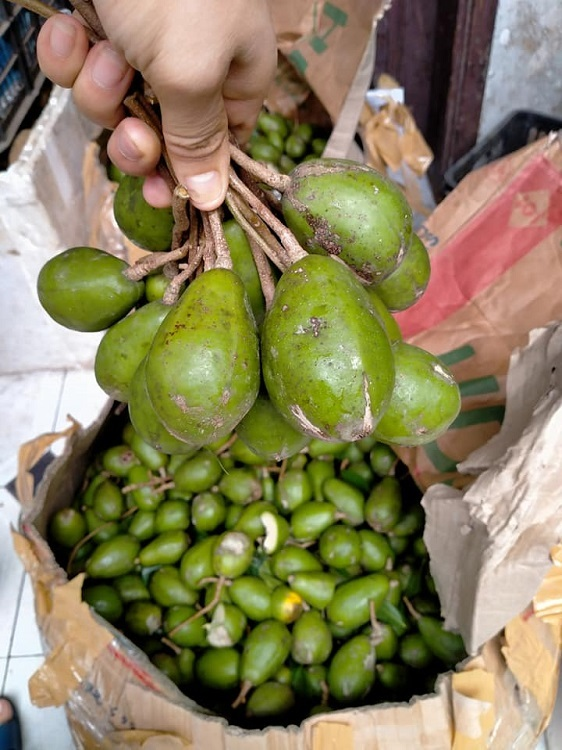 Ngày bán 30kg cóc xanh quanh phố cổ Hà Nội, người phụ nữ bỏ túi 15 triệu/tháng