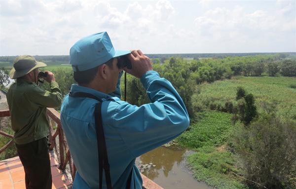 Tram Chim National Park's endangered birds need protection as habitats shrink