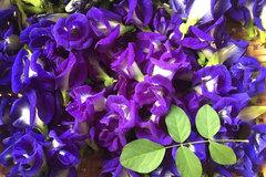 Hoa dại trước hiên nhà, sấy khô bán giá gần 1 triệu/kg