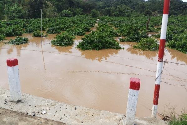 Mưa lũ gây ngập lụt, sạt lở cô lập nhiều vùng ở Đắk Nông