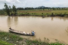 Mekong Delta farmers hit hard by late floods