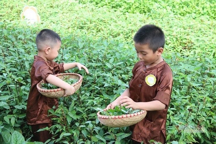Bộ Giáo dục tính hướng nghiệp cho học sinh từ cấp tiểu học