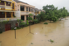Flood-hit areas evacuated in Hoi An