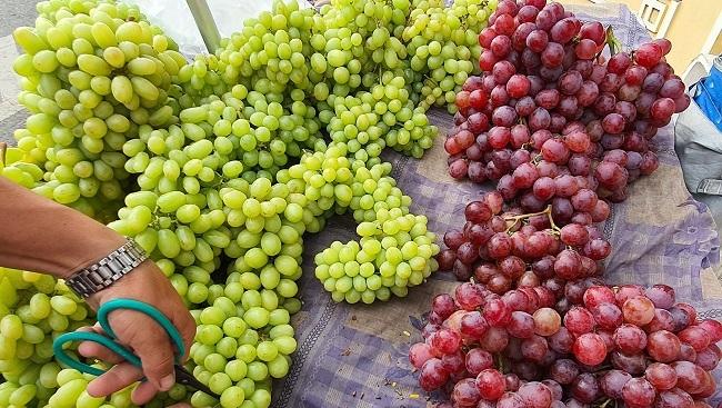 Nho xanh không hạt giá 'siêu rẻ' bán tràn lan, người trồng nho ở Ninh Thuận nói gì?