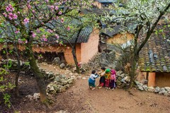 Vùng cao Mù Cang Chải có bước chuyển mạnh mẽ trong xóa đói, giảm nghèo