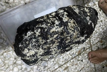 Vớt được cục đá 'đen ngòm' ngoài biển, người đàn ông kiếm gần 5 tỷ đồng