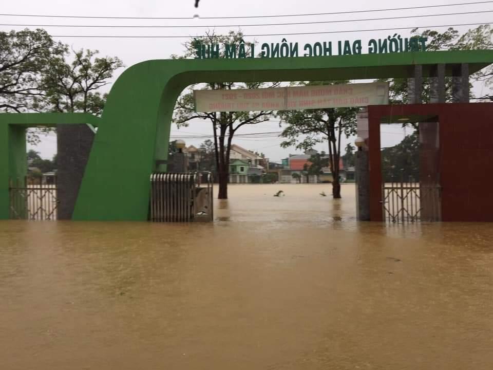 Hai đại học lùi thời gian nhập học vì mưa lũ