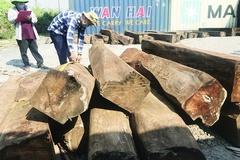 Tìm chủ lô hàng 60 container gỗ bị 'bỏ quên' tại cảng