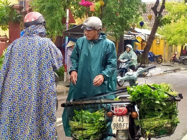 Hội An: Sau lũ lớn, rau xanh khan hiếm, giá tăng mạnh