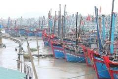 Northeastern localities brace for impact of typhoon Nangka