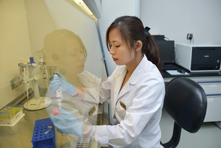 Liệu pháp tế bào gốc - 'cửa sống' cho các bệnh nan y