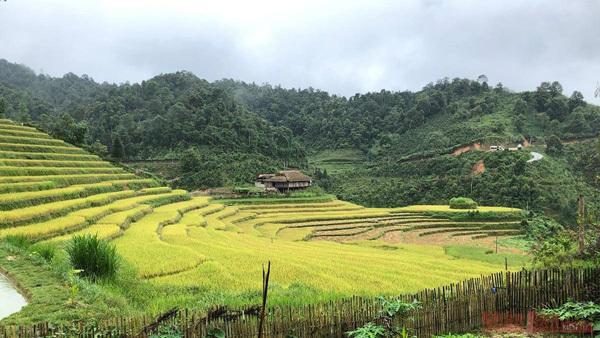 Lao Cai,Bac Ha