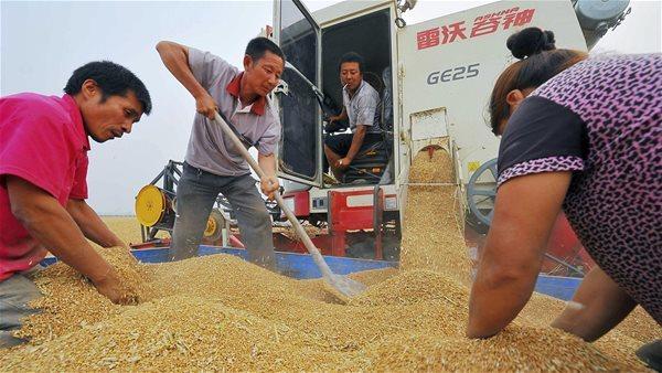 Trung Quốc dẫn dắt cuộc đua 'vét hàng' trước mùa đông