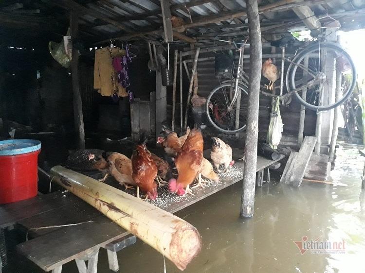 Nước lũ chia cắt khắp ngả ở Quảng Trị, bé 9 tháng tuổi bị tường sập tử vong