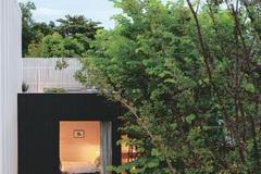 Ngôi nhà tối giản nhưng vô cùng hiện đại