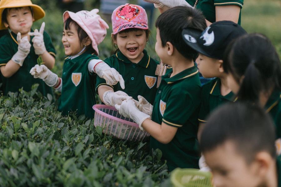 Vì yêu hoa, nữ giáo viên đã khởi nghiệp bằng vườn hồng 2.000 gốc