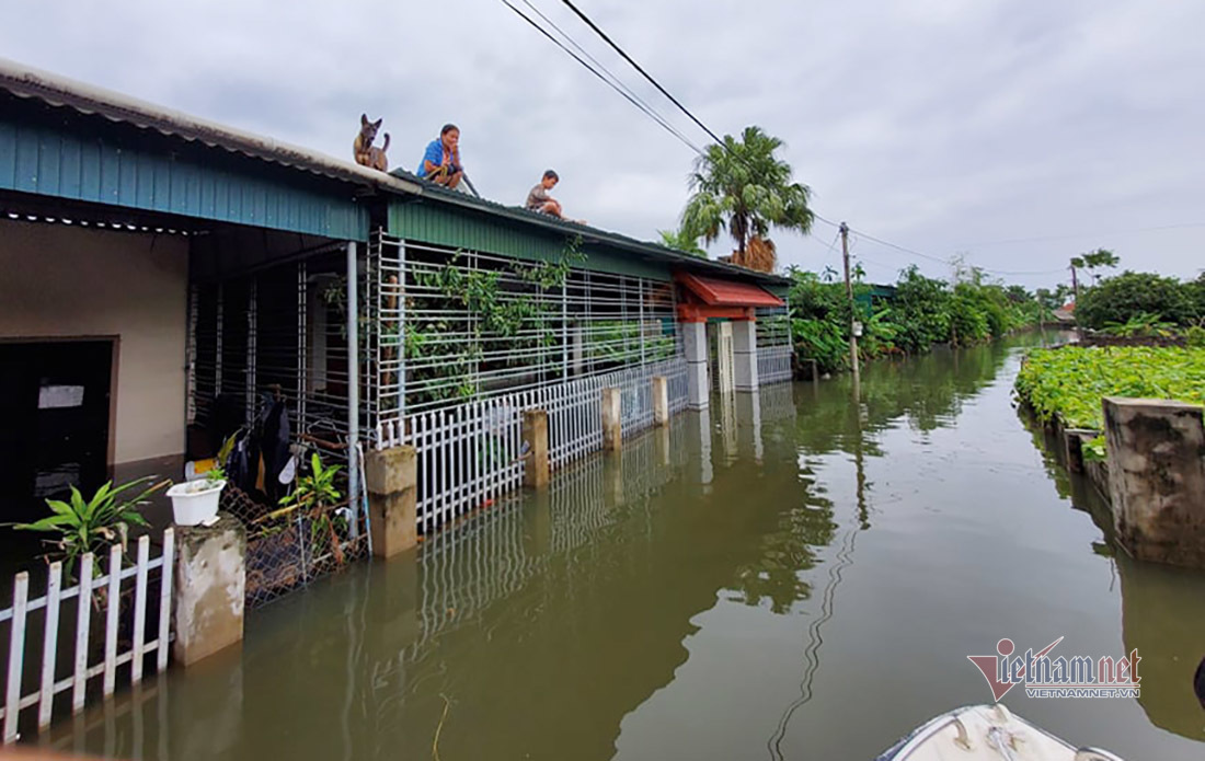 Cứu trợ lũ lịch sử ở Hà Tĩnh: 'Tôi không nhận đâu, anh để cho nhà khác'