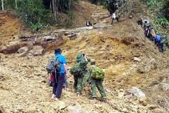 Toàn văn thông tư 13/2019/TT-BNNPTNT về trồng rừng thay thế