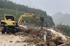 Toàn văn quyết định 661 về dự án trồng mới 5 triệu ha rừng