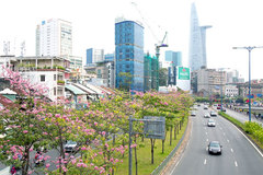 HCM City speeds up sub-projects for smart city development