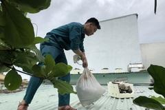 Người dân Đà Nẵng khẩn trương chằng chống nhà cửa đón bão số 9