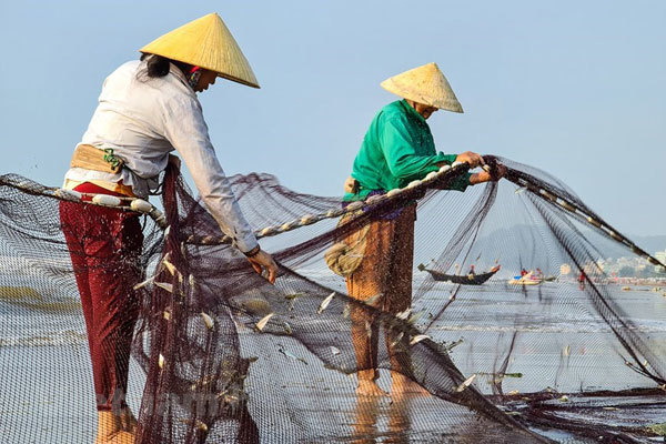 Van Chai fishing village,thanh hoa travel