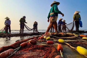 Van Chai fishing village: Hidden charm of Sam Son beach city