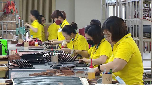 Chiến lược xây tổ để có 'đại bàng' Quốc tịch Việt Nam