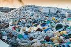 Vòng đời 1 chai nhựa, bí mật kiếm tiền của tỷ phú không ai ngờ