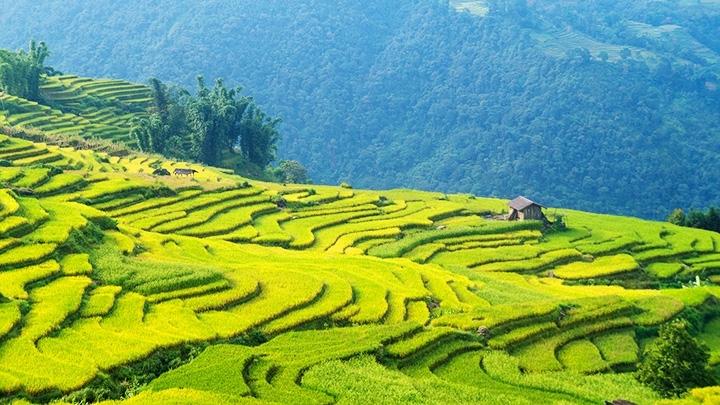 Y Ty,vietnam travel,Ha Nhi ethnic