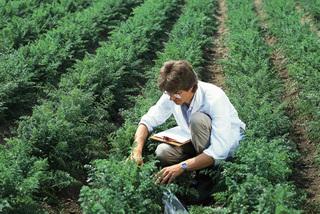 Lý do HiPP kiên trì sản xuất thực phẩm hữu cơ dành cho trẻ nhỏ