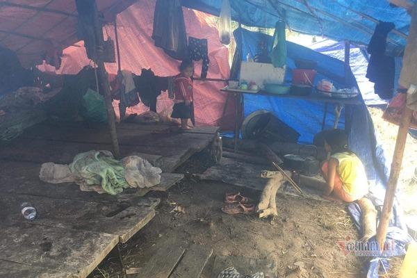 Núi lở, lũ ngập nhà, dân bản Quảng Bình ra sườn đồi trú trong lều bạt