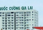 Quốc Cường Gia Lai trả nợ hàng chục tỷ cho chủ tịch và CEO