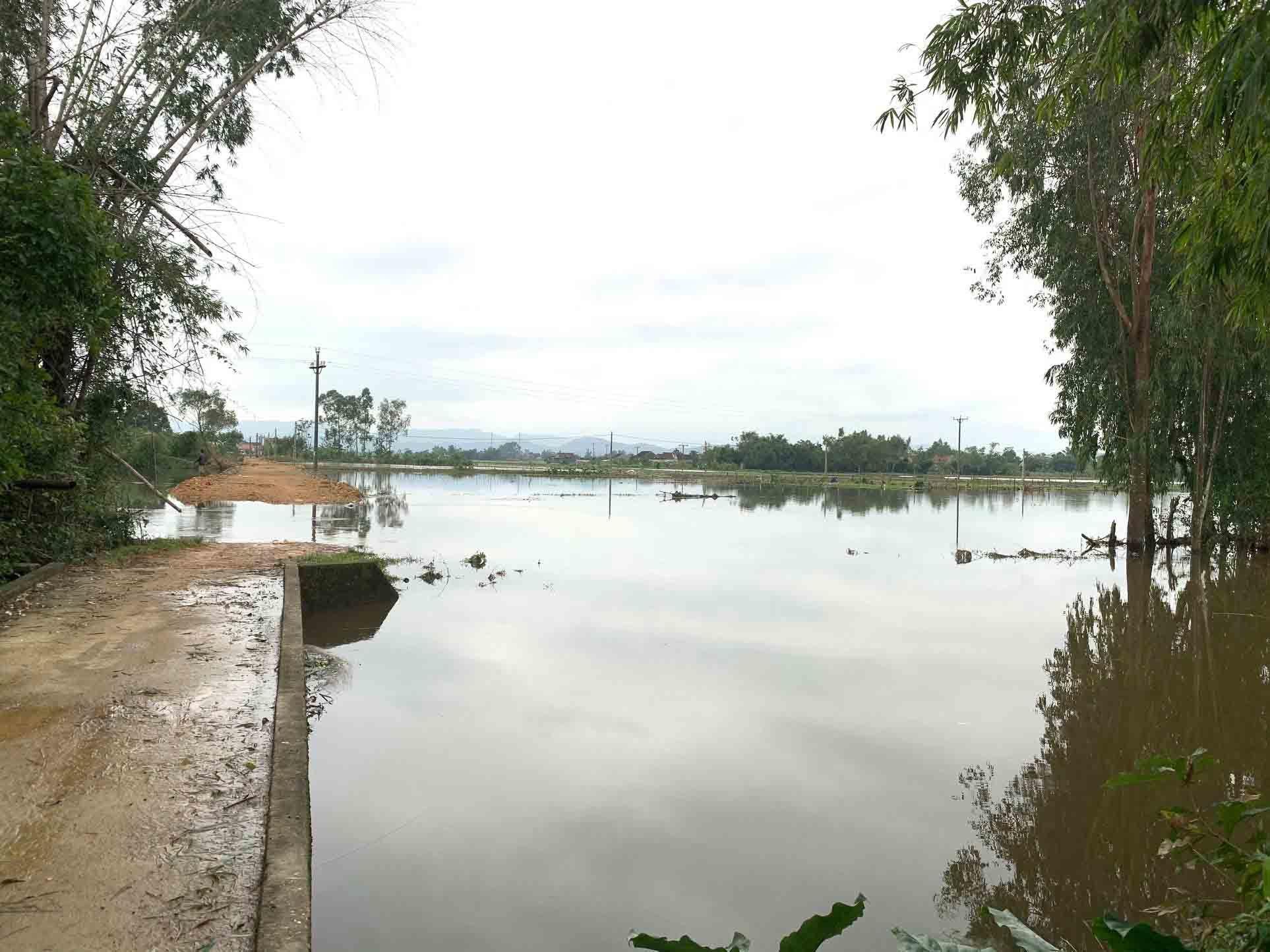 Nam sinh lớp 9 lao xuống sông cứu sống 2 học sinh bị nước cuốn