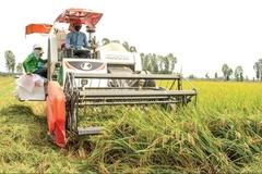 """Phong trào """"Người nông dân chuyên nghiệp"""" ở nông thôn mới Đồng Tháp"""