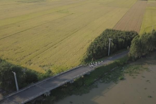 """""""Mekong Delta Marathon"""" Hậu Giang 2020: """"Mỗi vận động viên chạy-1 cây xanh được trồng, mỗi bước chạy-một tấm lòng được sẻ chia về miền Trung"""""""