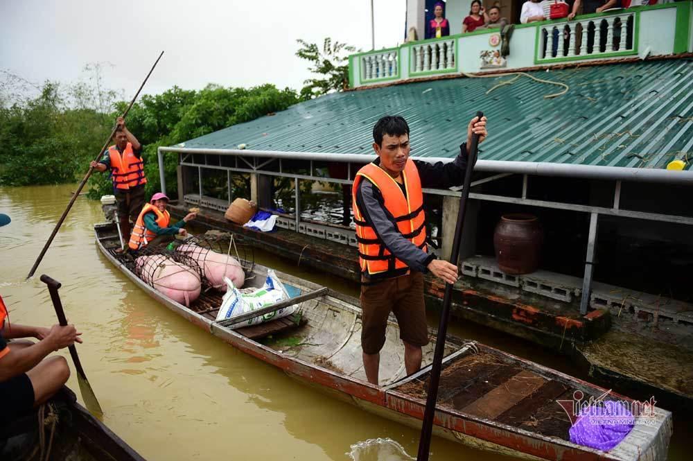 Quốc hội, rừng, thủy điện nhỏ và lũ lụt