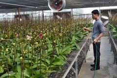 Khoa học công nghệ thúc góp phần nâng cao chất lượng nông thôn mới