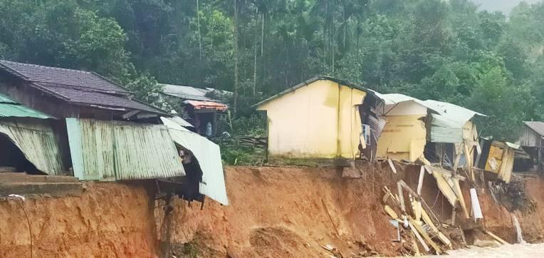 Quảng Nam muốn lấy rừng làm đường, Bộ Nông nghiệp cảnh báo
