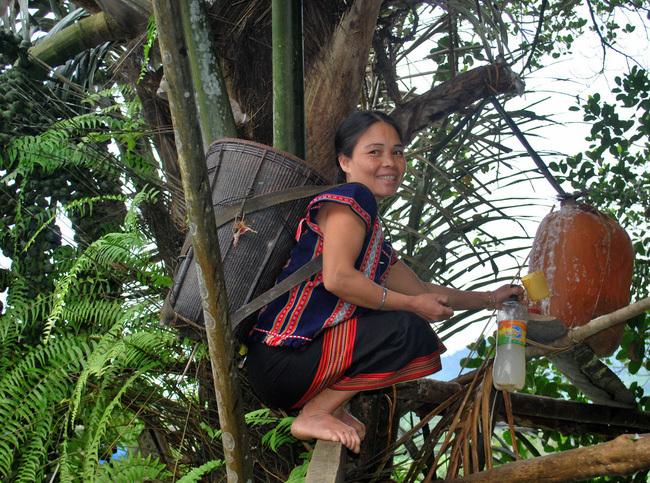 Lên vùng đất này xem nông dân 'nấu rượu' trên cây, đàn bà con gái cũng leo lên nấu tốt