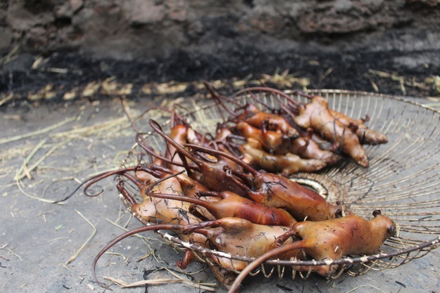 Kỳ lạ làng 'nghiện' ăn thịt chuột ở Hà Nội, trẻ em và phụ nữ đều thích mê