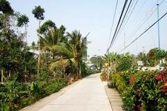 Đồng Tháp: Khảo sát tình hình xây dựng nông thôn mới